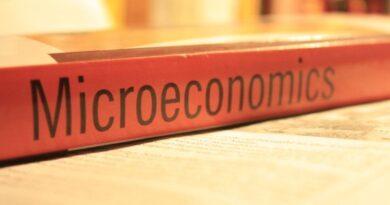 Microeconomics Assignment